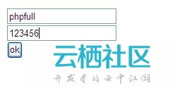 file get contents php input , r 实例介绍